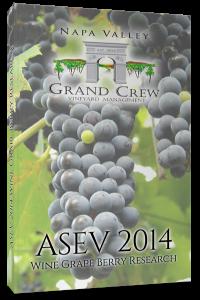 ASEV Cover